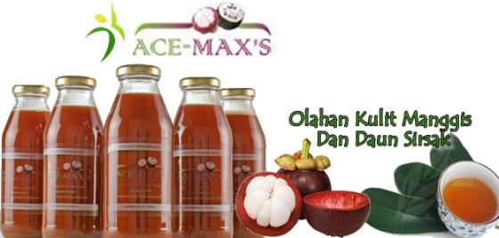 Obat Darah Tinggi Herbal Ace Maxs